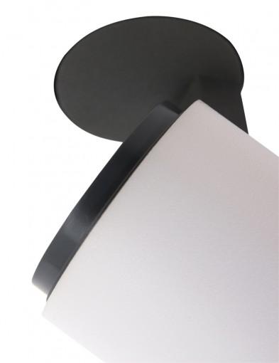 plafon-dos-focos-1360w-2