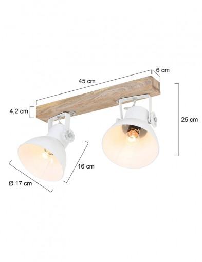 plafon-dos-luces-blanco-y-madera-1379W-5