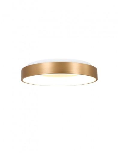 Plafón anillo dorado-2562GO